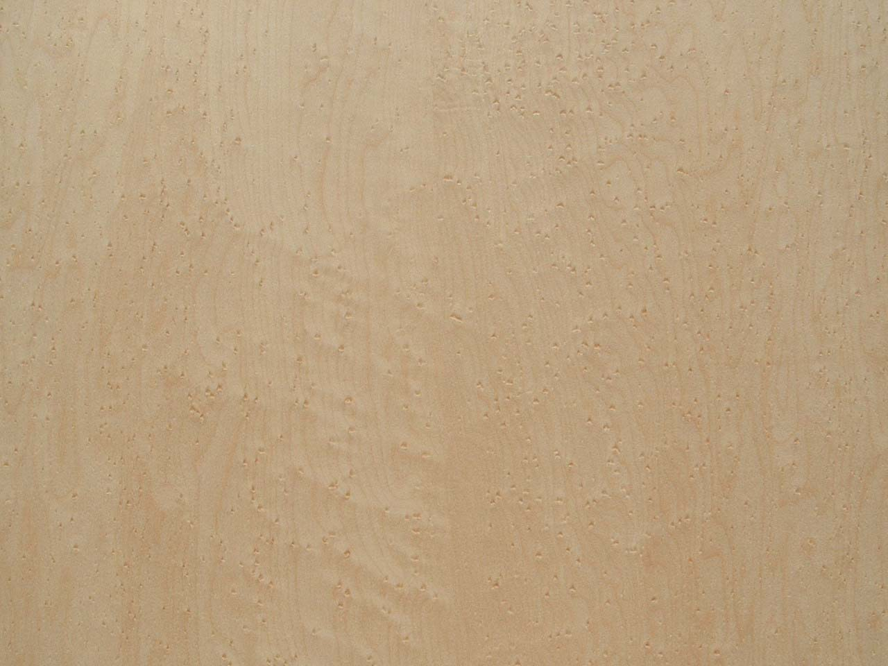 Birdseye maple plywood