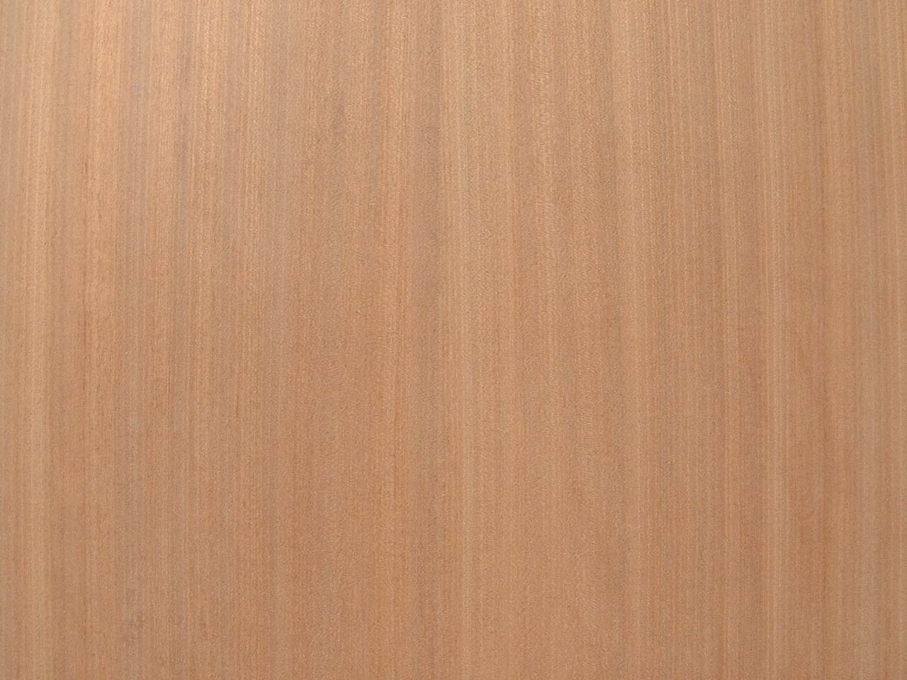 mahogany plywood price