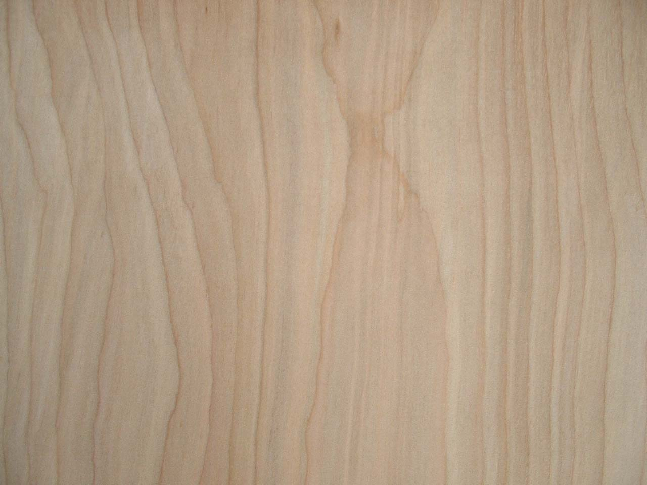 Back > Gallery For > Birch Plywood Sheet